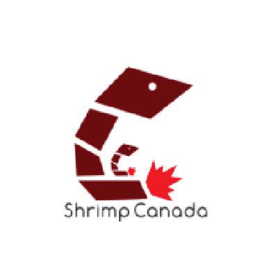 Shrimp-Canada