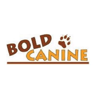 bold-canine